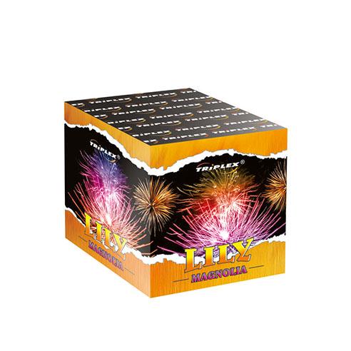 Firework TXB174