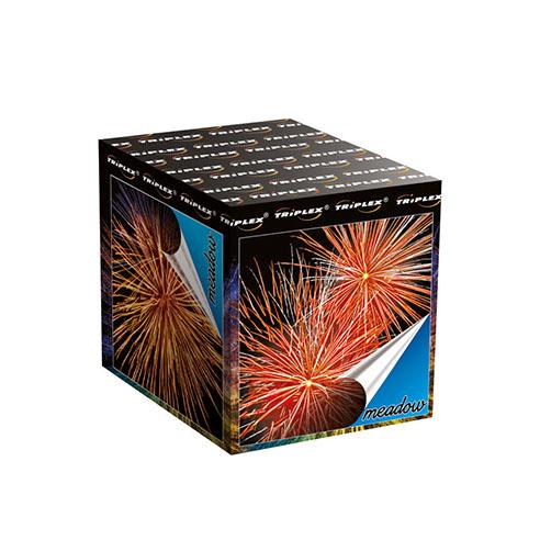 Firework TXB646